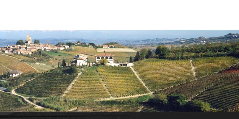 Azienda Agricola Falletto di Bruno Giacosa