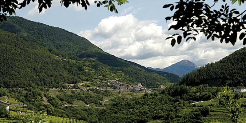 Pilzer Distilleria